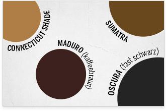 Die Farbe des Deckblatts