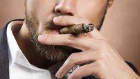 Zigarren-Marken entdecken