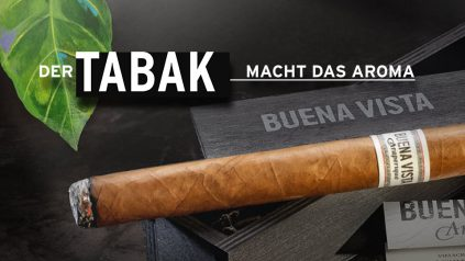 Der Tabak macht das Aroma: BUENA VISTA Araperique