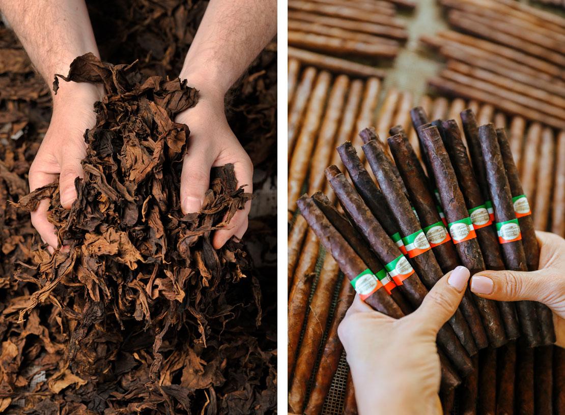 Tabak für Toscano-Zigarren